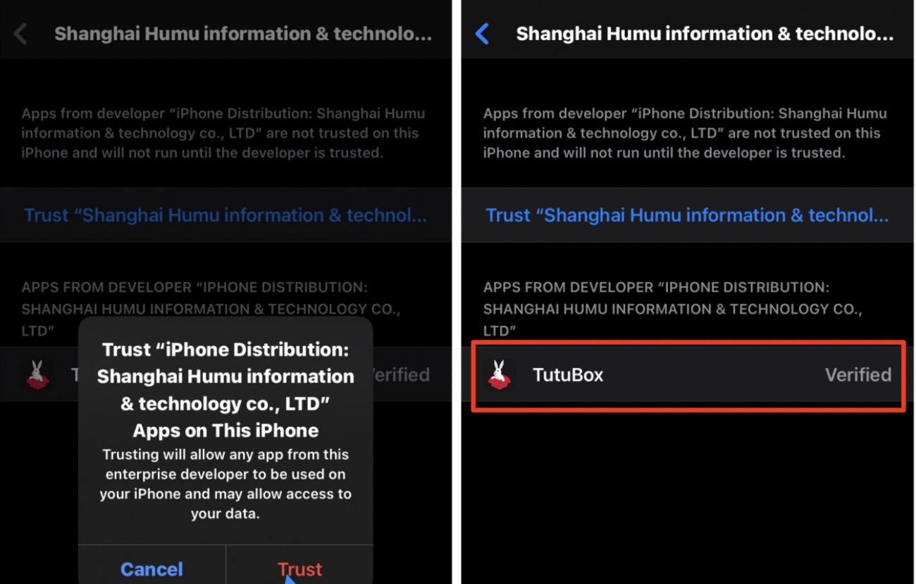Trust TuTuBox App on iOS